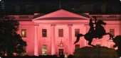 The White House is pink in breast cancer awareness