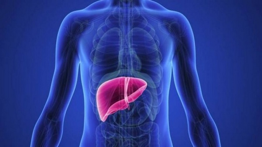 Symptoms indicate that the liver is at risk