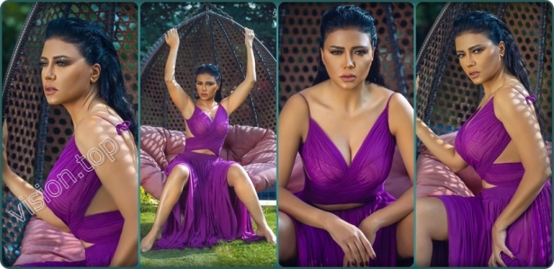 Photos of Rania Youssef in a bold dress