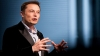 Elon Musk became the seventh richest character in the world