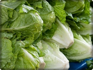 Lettuce and carrots have a nutritional value that exceeds bread and rice