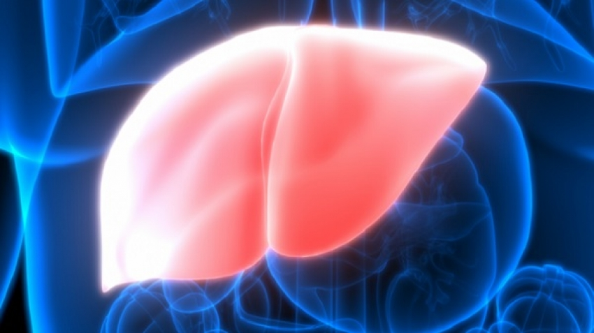 Symptoms of fatty liver disease and its treatment